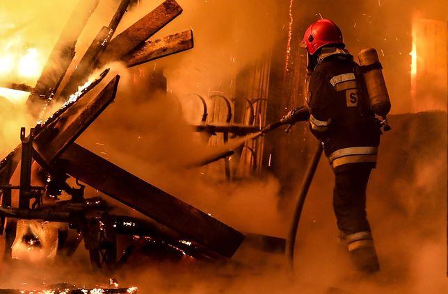 Strażacy - to im Polacy ufają najbardziej. Księża zaskakująco nisko. Politycy na dnie