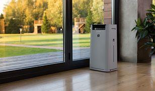 Planujesz zakup oczyszczacza powietrza do domu? Poznaj najważniejsze parametry tych urządzeń