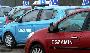 : egzamin, prawo jazdy, samochód egzaminacyjny (PAP, Fot: Marcin Bielecki)