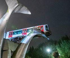 Przedziwny wypadek. Pociąg metra zatrzymał się na… ogonie wieloryba