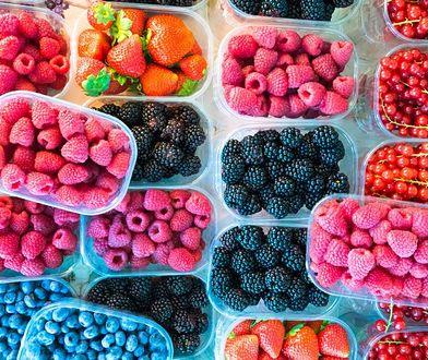 Przez suszę nie łatwo mają krzewy jagodowe (maliny, borówki, porzeczki, jeżyny)