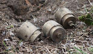 Tak wyglądają kapsuły z radioaktywnym izotopem kobaltu, który złodzieje zakopali w ziemi na poznańskim Górczynie.
