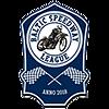 Baltic Speedway League