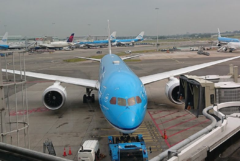 Polka aresztowana w Holandii. Zaatakowała załogę samolotu