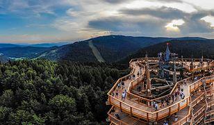 Pierwsza w Polsce Wieża widokowa w koronach drzew o unikalnej konstrukcji drewnianej powstała w Krynicy-Zdroju