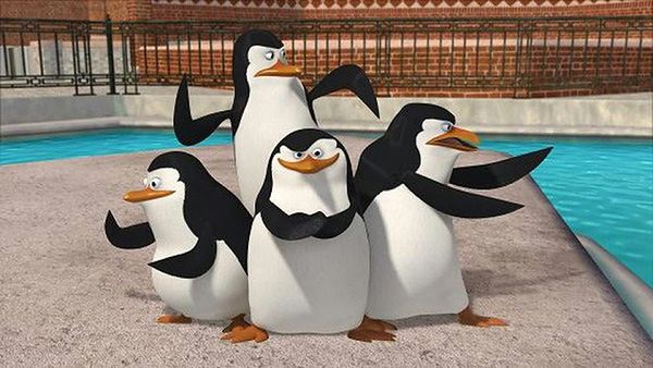 Pitbull świętuje z pingwinami z Madagaskaru