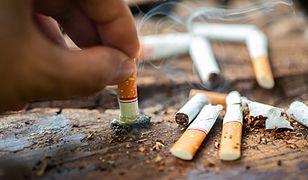 Podgrzewacze tytoniu. Jak jest z ich szkodliwością? Eksperci wyjaśniaja