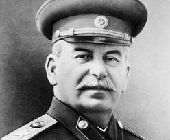 Pomnik Stalina stanie w Murmańsku? Tego chcą komuniści