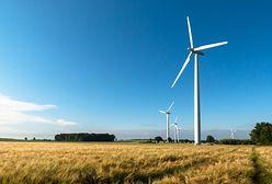 Niemcy protestują. Sprzeciwiają się energii wiatrowej