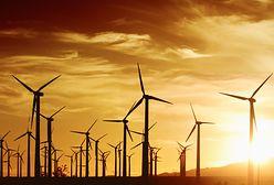 Największa farma wiatrowa w budowie. Kosztuje ponad 15 mld zł