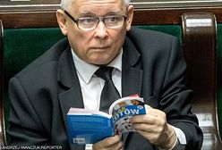 """To było hitem. Kaczyński tłumaczy, dlaczego czytał w Sejmie """"Atlas kotów"""""""