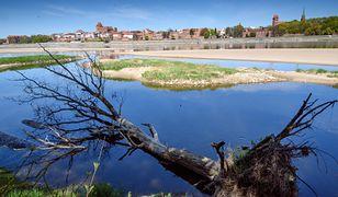 Susza w Polsce będzie rekordowa. Hydrolog ostrzega, że zasoby wody mamy bardzo małe