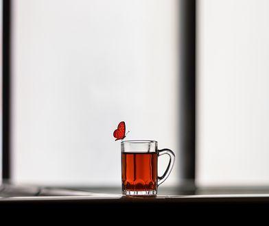 Ciemne piwo jest pokarmem dla motyli