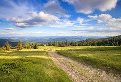 Szlak Przyrody Województwa Śląskiego. Jest przewodnik online. 50 atrakcji w regionie