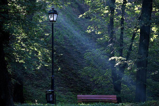 Wrocław. Pogoda. 23 września - kolejny ciepły dzień. Niestety, od piątku ulewy i ochłodzenie