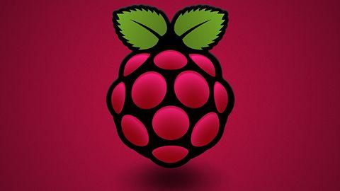 Raspberry Pi skrojone na miarę: Element14 będzie robić zmutowane Maliny