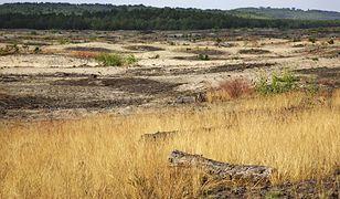 Polska zamienia się w pustynię?