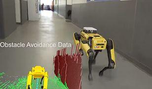 Robot analizuje otoczenie w celu doboru najlepszej drogi