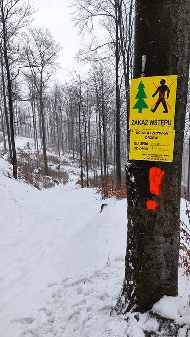 Gdy wybieracie się w góry, patrzcie na znaki