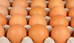 Rośnie moda na ekologiczne jaja.