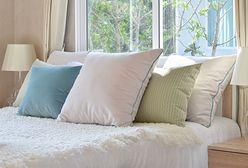 Jak często prać poduszki? Znamy poprawną odpowiedź