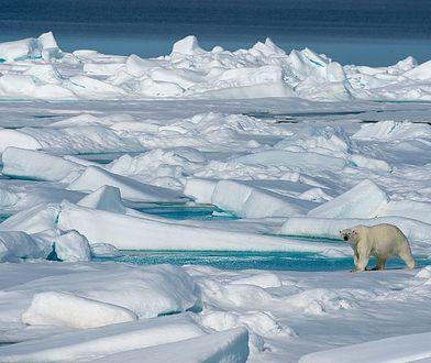 Rośnie liczba wyładowań atmosferycznych w Arktyce. To zła wiadomość dla naszej planety