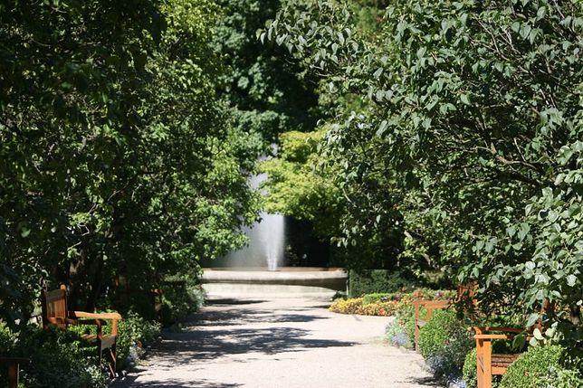 Ogród Botaniczny UW otwarty