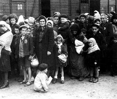 """""""Imperium małych piekieł"""": Szokujące odkrycie przy obozie Gross-Rosen [FRAGMENT KSIĄŻKI]"""