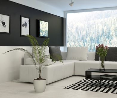 Czerń i biel doskonale pasują do minimalistycznych wnętrz