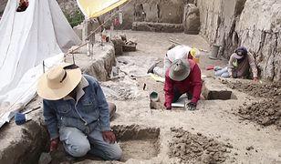 Archeolodzy odkryli szczątki mamutów