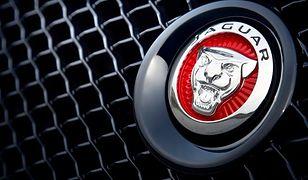 Polska przegrała ze Słowacją bitwę o fabrykę Jaguara