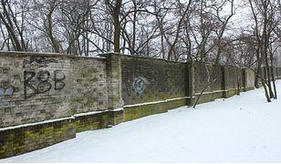 Mur znajdujący się przy zoo