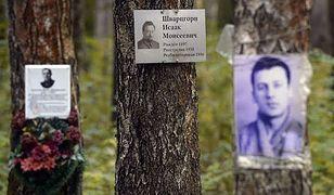 Na drzewach na terenie Kommunarki umieszczono fotografie i tabliczki z informacjami o ludziach, którzy tam spoczywają