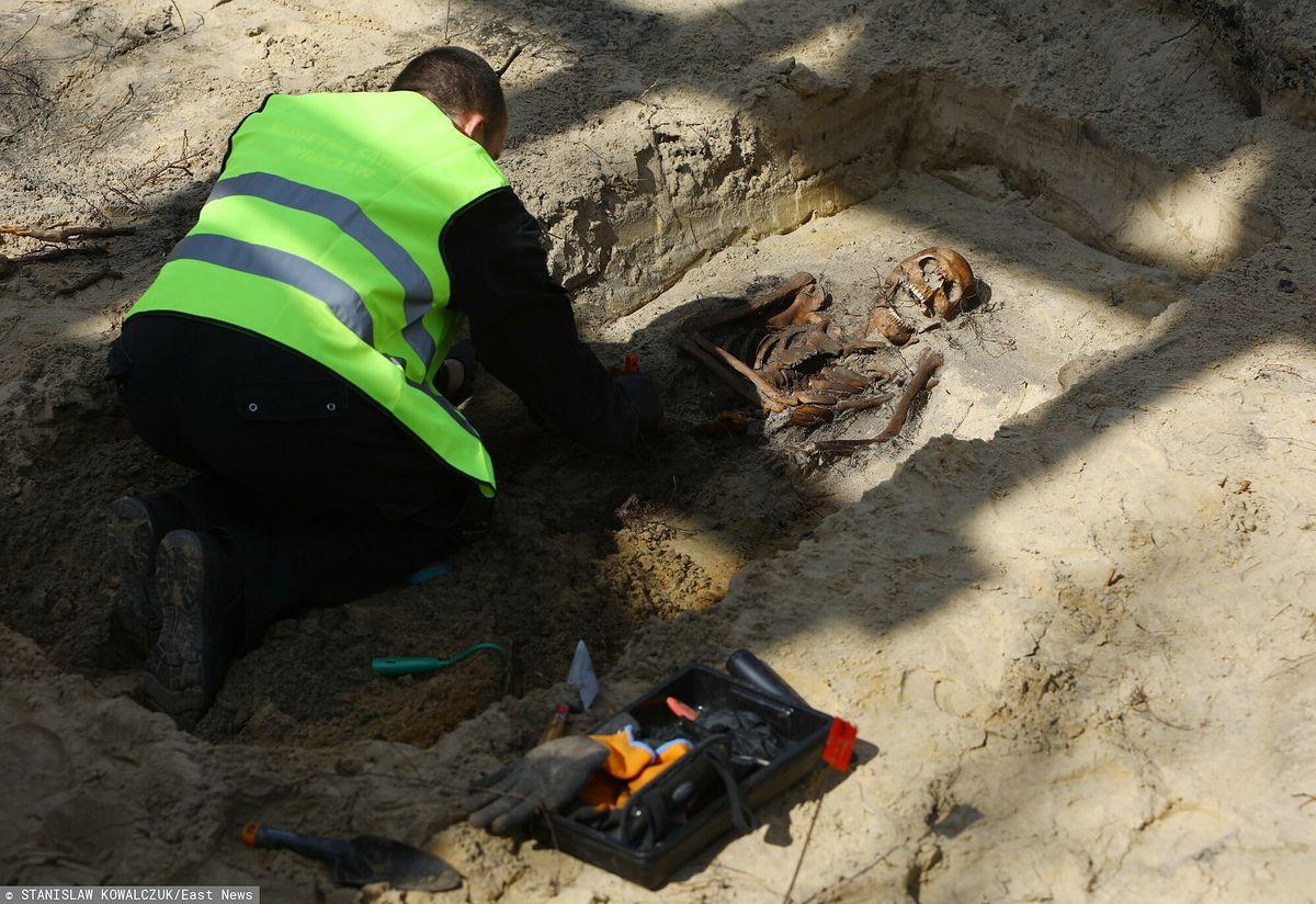 Prace ekshumacyjne odkryły szczątki czterech niemieckich żołnierzy