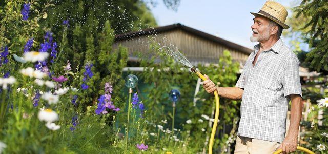 Platforma: ustawa o ogródkach działkowych - do końca roku
