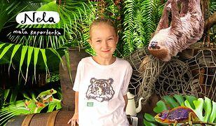 Comic Con KIDS - najlepsza propozycja na Dzień Dziecka