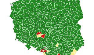 """Koronawirus w Polsce. Jesteśmy w """"czerwonej"""" strefie"""