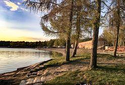 Jezioro Niedzięgiel w Skorzęcinie wysycha. Z biegiem lat może zamienić się w bajoro