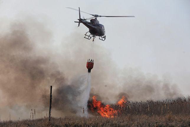 Biebrzański Park Narodowy w płomieniach. Poruszające słowa. Potrzebne wsparcie