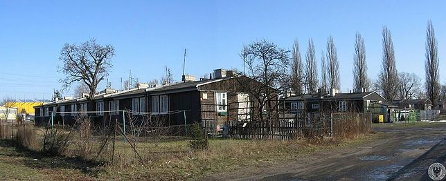 Wrocław. Podróż do historii. Archeolodzy zbadają dawny nazistowski obóz