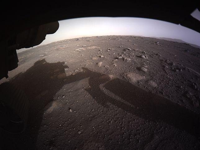 Perseverance przesłał kolejne zdjęcie z Marsa