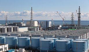 Fukushima: Woda z reaktora może uszkodzić ludzkie DNA – tak uważa Greenpeace