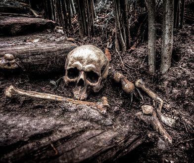 Odkrycie w Bochni. Naukowcy znaleźli ślady czarownic