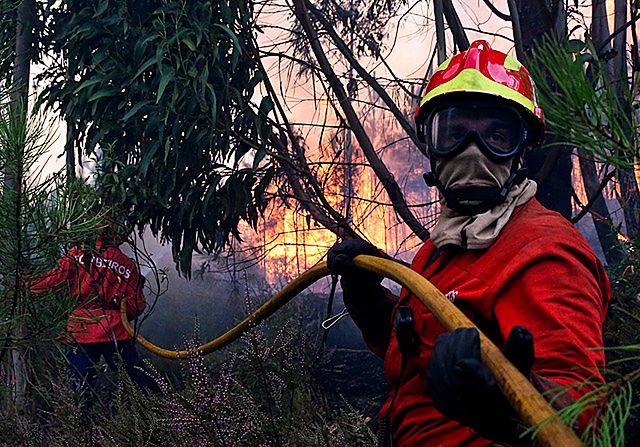 Ściana ognia w Portugalii. Walczyli z żywiołem - zdjęcia