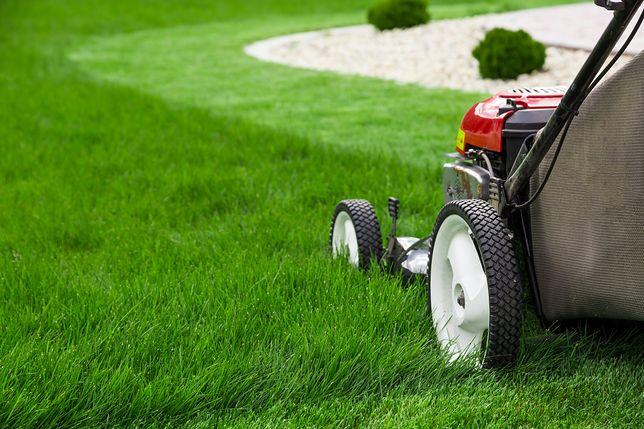 Glebogryzarka, wertykulator czy kultywator? Zobacz urządzenia, które powinien znać każdy ogrodnik
