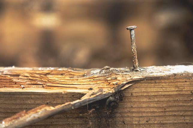 Jak usunąć stare gwoździe i śruby? Metody, które działają błyskawicznie