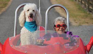 Dzielna 90-latka z USA i jej wielka podróż na pożegnanie