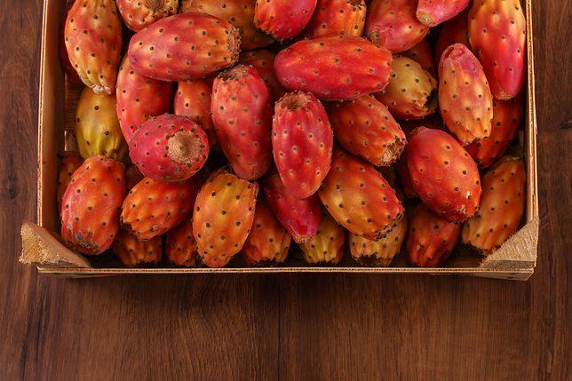 Opuncja figowa to owoc, który idealnie wzbogaca dietę odchudzającą.