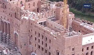 """""""Zamek? Nie mamy z nim nic wspólnego"""". Szef Fundacji Fauna Polski tłumaczy podejrzenia"""