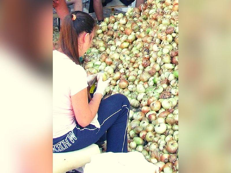 Malwina zarabia obierając cebulę